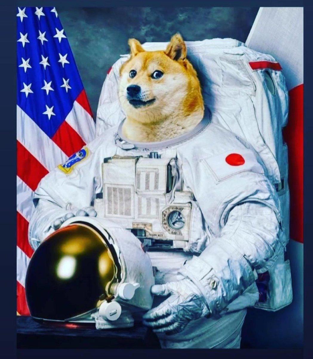 """SpaceX laukaisee 'Doge-1""""-lennon kuuhun"""
