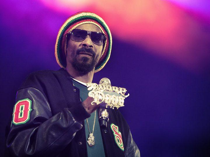 SnoopDogg paljastaa olevansa NFT-keräilijä CozomoMedici